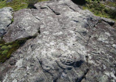petroglifos amoedo